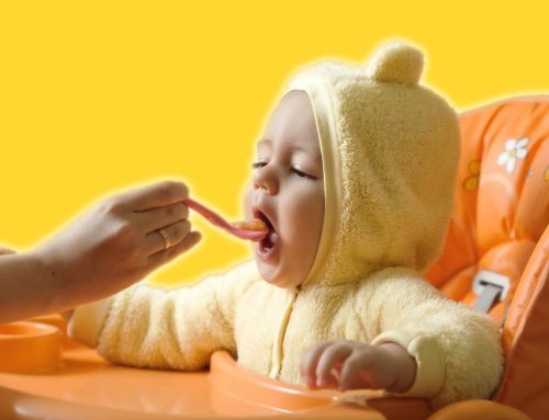 Solid Food Introduction